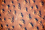 Барханы Алжирской пустыни